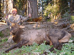 West Fork Outfitters - A top quality Colorado Outfitter and